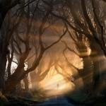 Krajobraz niczym z Władcy Pierścieni, Irlandia (fot. Stephen Emerson)