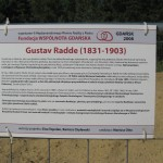 Informacja o G. Radde